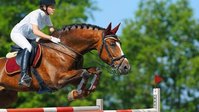 CAROLINE CEA BRYAN WELLINGTON-EQUESTRIAN-POLO-NUTRITION-HEALTH-HORSE-RIDER-FL-PALM-BEACH